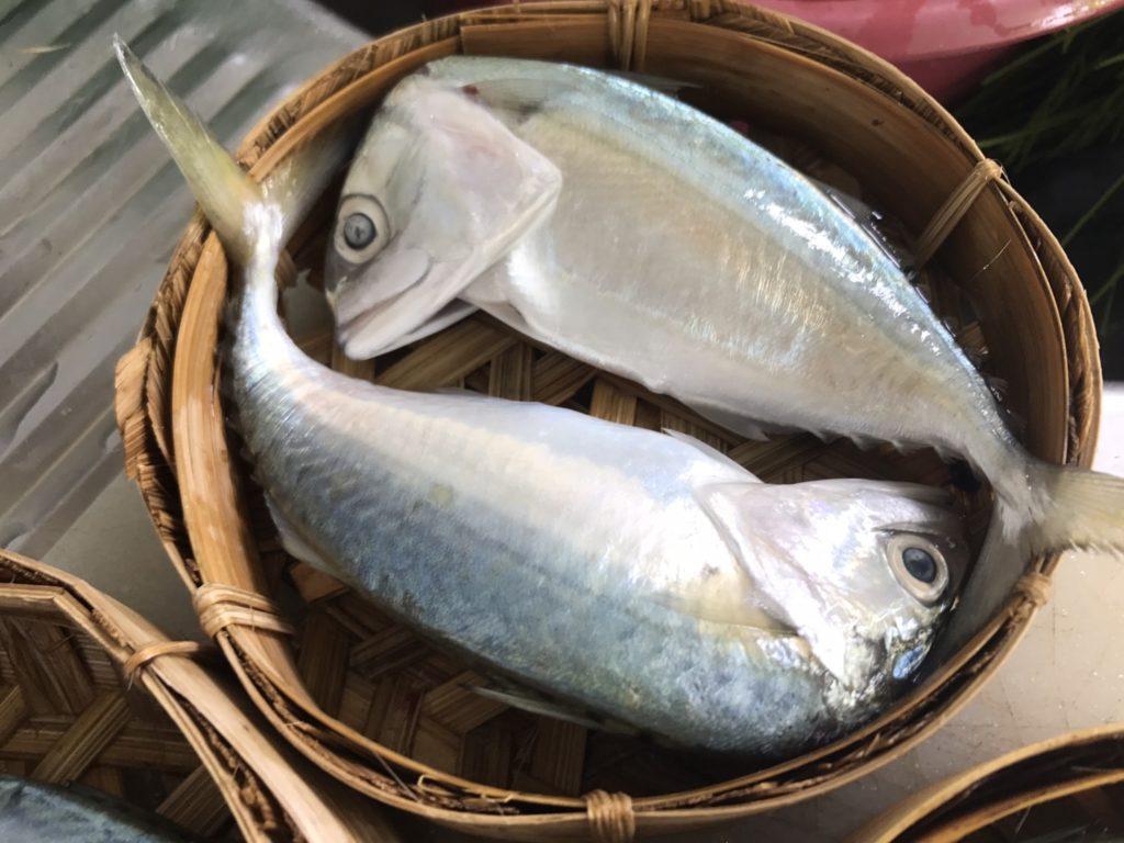 วัตถุดิบฉู่ฉี่ปลาทู