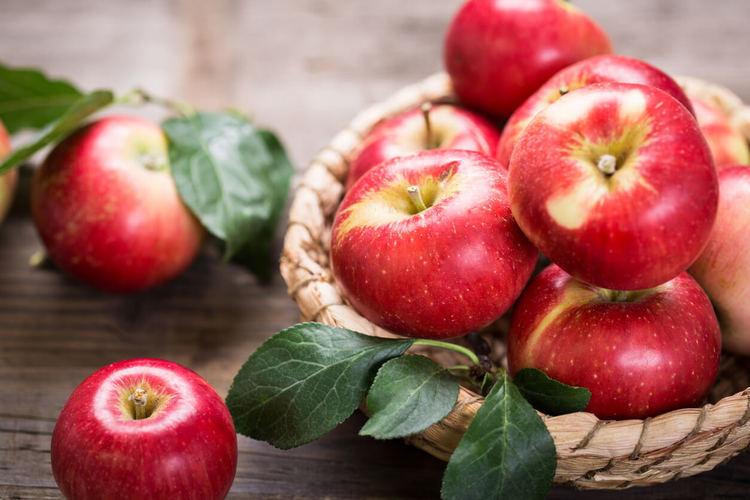 กลิ่นหอมจากธรรมชาติ สมุนไพรและผลไม้ 2